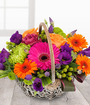 Plants, Arrangements & Baskets