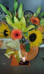 Aqua pack - Sunflowers