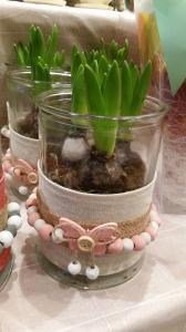 Hyacinths - Butterfly Pot