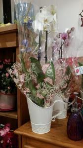 Orchid Jug