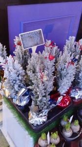 XMas Trees - Snow