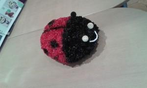 Ladybug-01